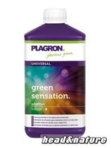 Plagron Green Sensation, 250 ml #0